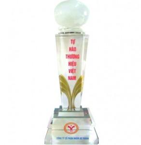 cup vang thuong hieu 2011